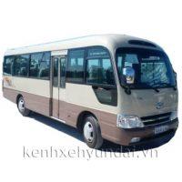 Xe khách 29 chỗ Hyundai e-County XL thân dài Limousine