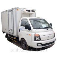 Xe tải Hyundai H100 2.6 T2-D 1tấn thùng đông lạnh
